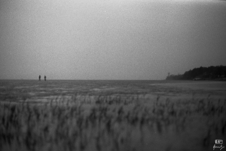 A family taking an evening stroll on the sea bed with sea grass in the foreground in Chandipur in Odisha, India. Chandipur is famous for the vanishing beach. One can walk for kilometers into the sea during low tides.
