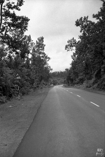 A stretch of good road on AH46 somewhere in the Eastern ghats, in Western Odisha. I shot this frame using my 35mm Canon FTb QL manual film SLR on an Ilford HP5 Plus 400. This was the last bit of good road and was nothing like what lay for us in store ahead.