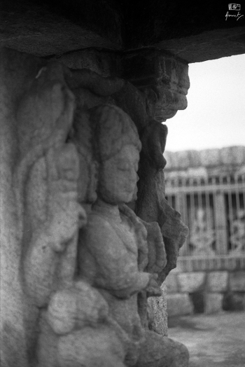 Three faced Lord Shiva at the center of 64 Yogini Temple, in Ranipur Jharial, Bolangir, Odisha, India. I shot this frame using my 35mm Canon FTb QL manual film SLR on an Ilford HP5 Plus 400.